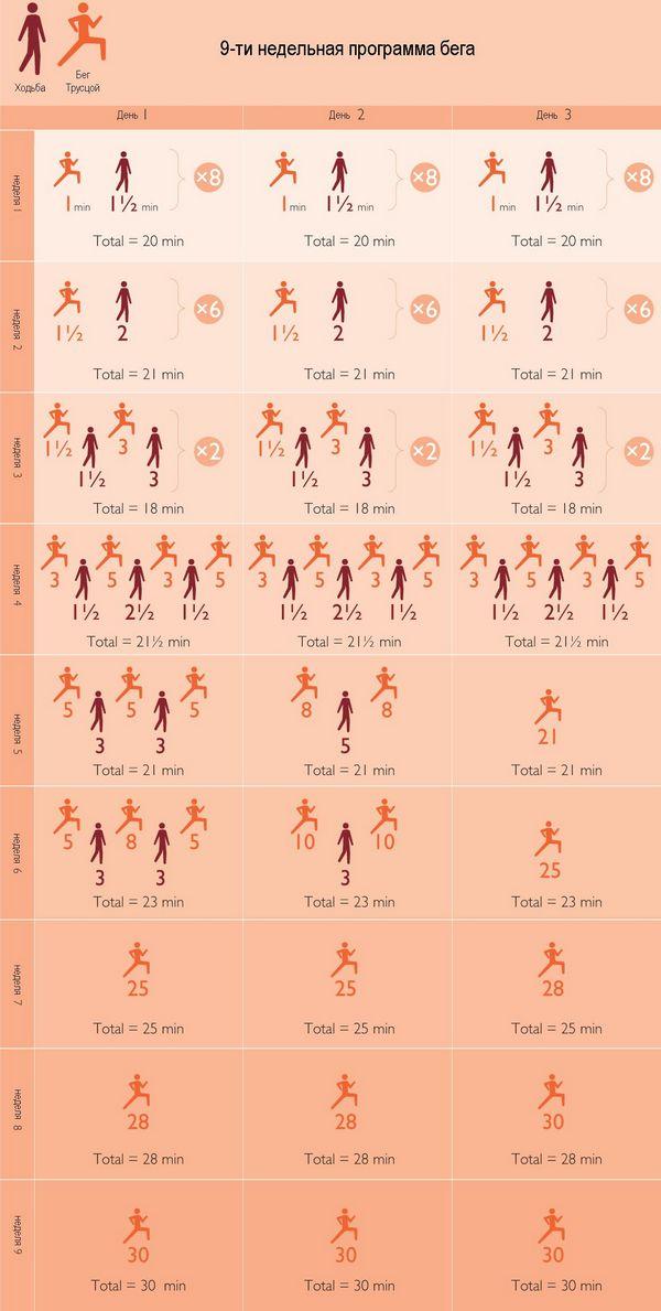 программа похудения тяньши